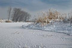 Meer dichtbij Negovan, Sofia, Bulgarije - de winterbeeld Royalty-vrije Stock Afbeelding