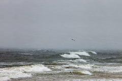 Meer in einem Blizzard Stockbild