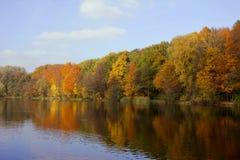 Meer en bos bij de herfst Stock Foto's