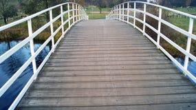 Meer en brug Stock Afbeelding