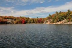 Meer en de herfstbos Stock Foto