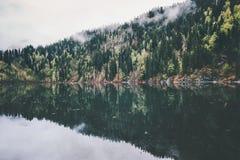 Meer en naaldforest landscape Royalty-vrije Stock Afbeeldingen