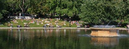 Meer en park in de zomer Royalty-vrije Stock Foto's