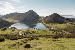 Meer Enol in het natuurreservaat van de meren van Covadonga, Picos D Stock Foto