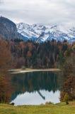 Meer Freibergsee met de herfstbos in de Duitse alpen Royalty-vrije Stock Foto's