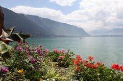 Meer Genève. Montreux. stock afbeeldingen