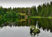 Meer in het bos Royalty-vrije Stock Foto