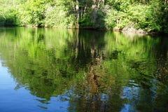 Meer in het bosverhaal stock foto's
