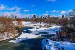 Meer in het Central Park van de Stad van New York in de winterlandschap, de V.S. stock foto