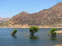 Meer in het Nationale Park van de Sequoia, Californië stock afbeeldingen