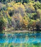 Meer in het nationale park van Jiuzhaigou royalty-vrije stock foto's