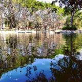 Meer in het Park stock foto