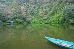 Meer in het regenwoud stock fotografie