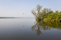 Meer Kivu en krokodileiland Royalty-vrije Stock Fotografie