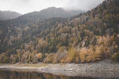 Meer kruth-Wildestein in de Vogezen met lage waterstand en herfstbomen op bergen donkere humeurige hemel royalty-vrije stock afbeelding