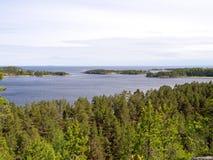 Meer Ladoga en bossen Stock Fotografie