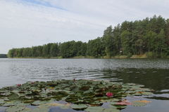 Meer in Litouwen, jaar 2013 Royalty-vrije Stock Foto's