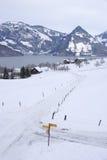Meer Luzerne stock fotografie