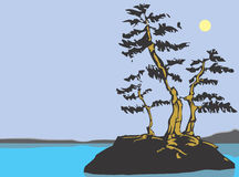 Meer met bomen Royalty-vrije Stock Fotografie