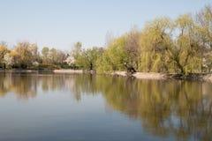 Meer met bomen in het park in de lente Royalty-vrije Stock Afbeeldingen