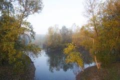 Meer met bomen tijdens zonsopgang Royalty-vrije Stock Foto's
