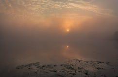 Meer met de mist bij zonsopgang Royalty-vrije Stock Afbeeldingen