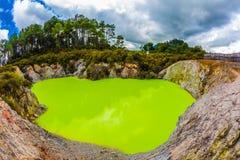 Meer met groen ondoorzichtig water royalty-vrije stock fotografie