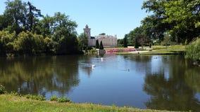 Meer met waterbirds in Franse chateautuin stock afbeeldingen