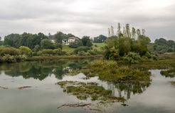 Meer met weerspiegelde bomen stock fotografie
