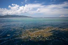 Meer mit sich hin- und herbewegendem Abfall, Natur und Umwelt Lizenzfreie Stockbilder