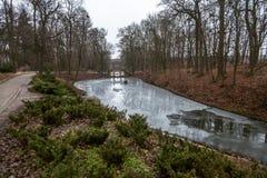 Meer in mooi park dat in ijs wordt behandeld Royalty-vrije Stock Afbeeldingen