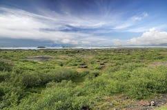 Meer Myvatn (IJsland) Stock Foto's