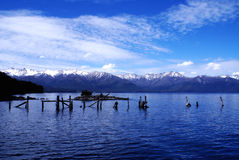 Meer nahuel-Huapi, Patagonië, Argentinië Royalty-vrije Stock Fotografie