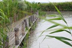 Meer Neusiedl, Nationaal Park stock fotografie