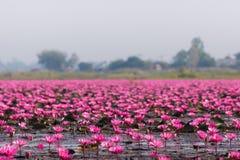 Meer Nong Harn, Thailand Stock Fotografie