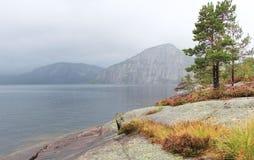 Meer in Noorwegen Royalty-vrije Stock Foto's