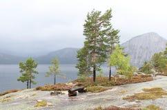 Meer in Noorwegen Royalty-vrije Stock Afbeeldingen