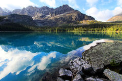 Meer O'Hara, Yoho National Park, Canada royalty-vrije stock afbeeldingen