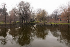 Meer in Parco Sempione Royalty-vrije Stock Fotografie