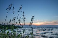 Meer Peipus bij zonsopgang Royalty-vrije Stock Foto