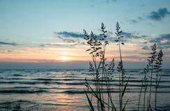 Meer Peipus bij zonsopgang Stock Afbeeldingen