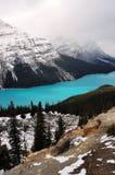 Meer Peyto in Canadese Rockies Royalty-vrije Stock Foto's