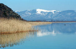 Meer Prespa, Macedonië Stock Afbeelding