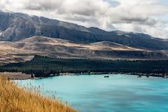 Meer Pukaki, Zuideneiland Nieuw Zeeland royalty-vrije stock fotografie