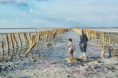 Meer sasyk-Sivash, de Krim Een vrouw en een kind lopen op het meer, met hun ruggen aan de camera Oriëntatiepunt, toeristen, reis royalty-vrije stock afbeelding