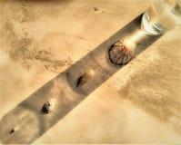 Meer schält Reflexion mit einem Wasserglas stockfotografie
