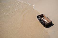 Meer Shell in einem Kasten Lizenzfreies Stockbild