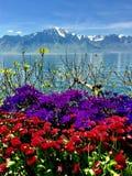 Meer, sneeuwbergbovenkanten en kleurrijke bloemen stock foto