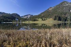 Meer Spitzingsee in Beieren, Duitsland Stock Fotografie