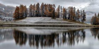 Meer St Moritz in de herfst Stock Fotografie